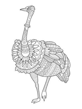 Ostrich bird coloring book vector illustration. Black and white lines. Lace pattern Illustration