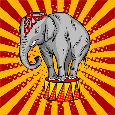 Circus elephant on pedestal pop art style vector