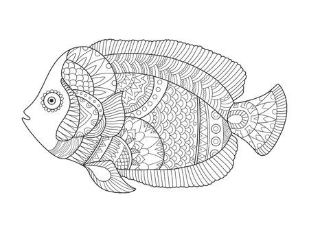 Angel fish coloring book vector illustration
