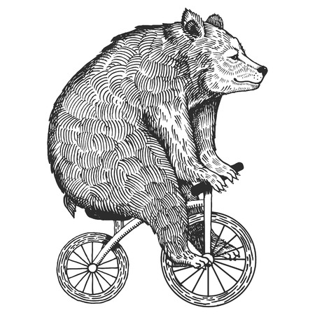 Circus bear on bicycle vector illustration. Scratch board style imitation. Hand drawn image. Фото со стока