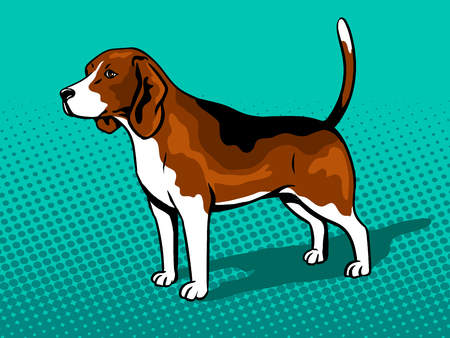 Dog Beagle pop art retro vector illustration. Comic book style imitation.