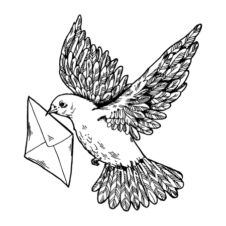 Postal dove with letter vector illustration. Scratch board style imitation. Hand drawn image.