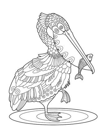 Pelícano pájaro con peces libro para colorear ilustración vectorial Foto de archivo - 82352480