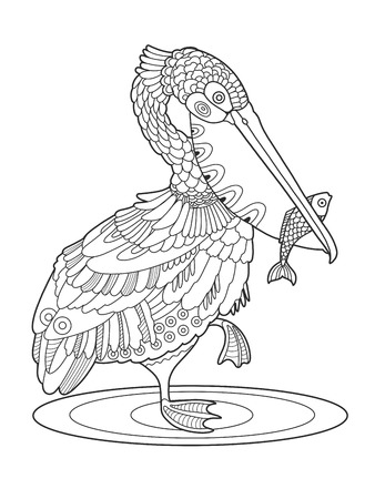 Pelican bird with fish coloring book vector illustration