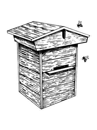 Bee hive and bees engraving vector illustration.