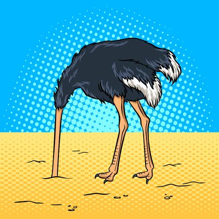 Struś ukrył głowę w piasku wektora pop-artu Ilustracje wektorowe