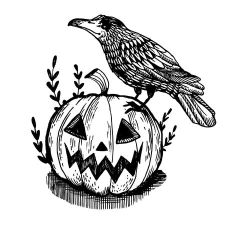 Crow bird and Halloween pumpkin engraving illustration. Illusztráció