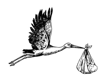 Cicogna trasportare l'illustrazione vettoriale di incisione del bambino. Imitazione di bordo scrapbooking. Immagine disegnata a mano.