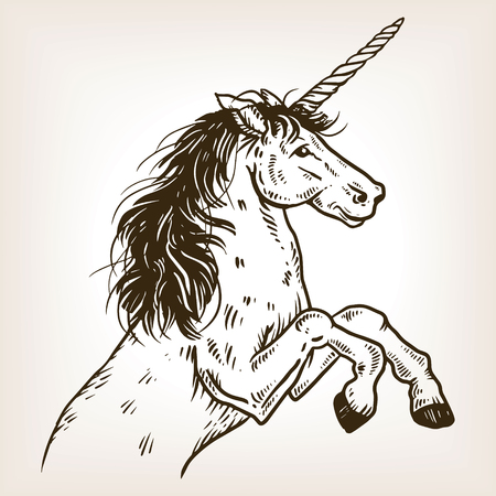 Unicorn mythical animal engraving vector illustration. Brown aged background. Scratch board style imitation. Hand drawn image.