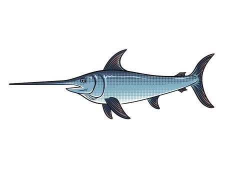 Dierlijke pop-art retro vectorillustratie van zwaardvissen. Geïsoleerde afbeelding op witte achtergrond. Comic book stijl imitatie.