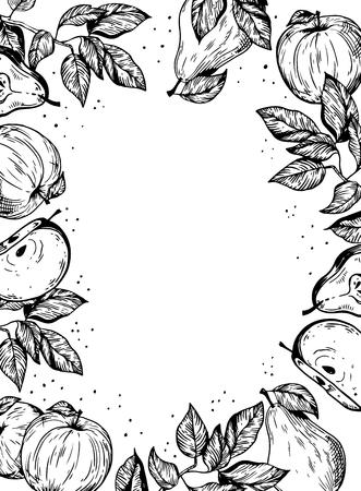 Vruchten appel en peren achtergrondontwerp die vectorillustratie graveren. Witte achtergrond. Geïsoleerd. Imitatie van een krasbordstijl. Hand getekende afbeelding.