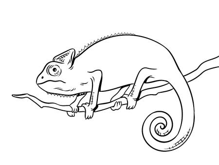 Illustration de vecteur à colorier animal caméléon. Image isolée sur l'imitation de style bande dessinée fond blanc. Banque d'images - 94065063