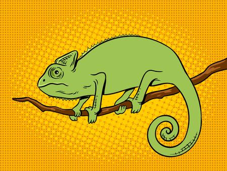카멜레온 동물 팝 아트 복고풍 벡터 일러스트 레이 션. 색 배경입니다. 만화 스타일 모방입니다. 일러스트