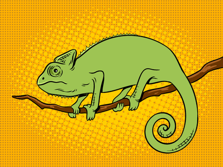 Chameleon animal pop art retro vector illustration. Color background. Comic book style imitation.