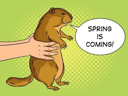 Groundhog animal in hands pop art retro vector illustration. Marmot predictor. Text bubble. Color background. Comic book style imitation. Vettoriali