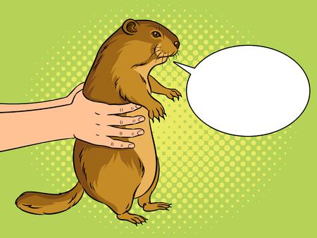 Groundhog in hands with speech bubble pop art vector illustration.