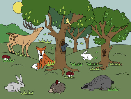 Cartoon forest coloring vector illustration. Color image.