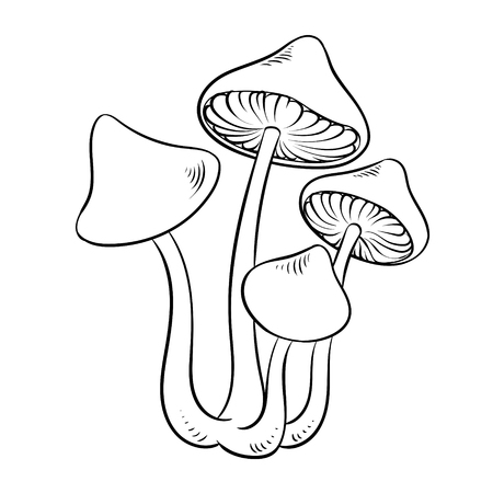 Narcotic mushroom coloring vector illustration Stock fotó - 102330496