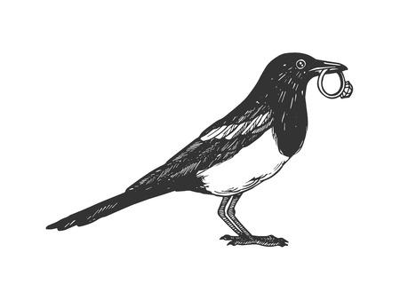 Magpie bird with golden ring engraving vector