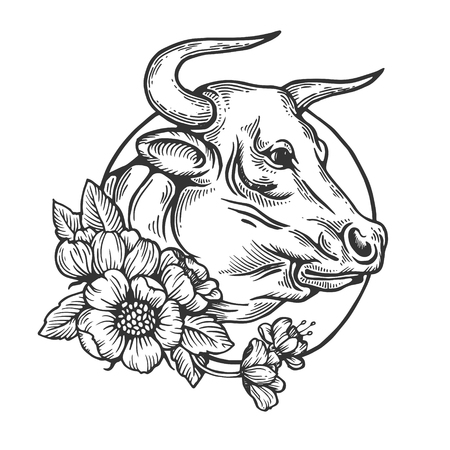 Bull animal engraving vector illustration. Scratch board style imitation. Black and white hand drawn image.