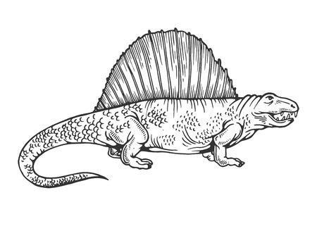 Dimetrodon dinosaur prehistoric extinct animal engraving vector illustration. Scratch board style imitation. Black and white hand drawn image.