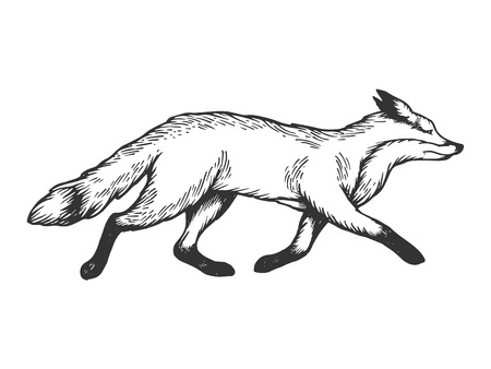 Running fox animal engraving vector illustration. Scratch board style imitation. Black and white hand drawn image. Ilustracja