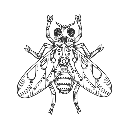 Mechanical fly insect animal engraving vector illustration. Scratch board style imitation. Black and white hand drawn image.