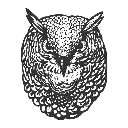 Owl bird head animal engraving vector illustration. Scratch board style imitation. Black and white hand drawn image. Stock Photo