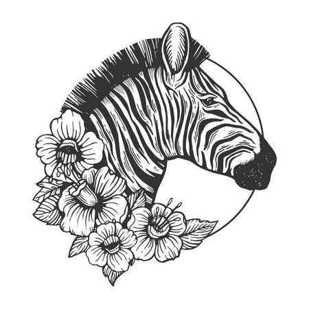 Ilustración de vector de grabado animal de cabeza de cebra. Imitación de tablero de rascar. Imagen dibujada a mano en blanco y negro.