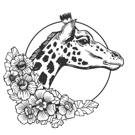 Ilustración de vector de grabado animal cabeza de jirafa. Imitación de tablero de rascar. Imagen dibujada a mano en blanco y negro.