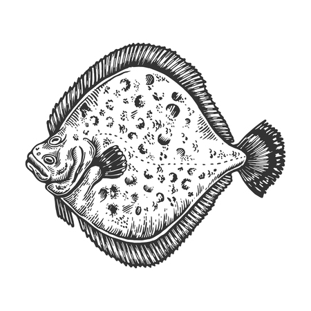 European plaice fish animal engraving vector