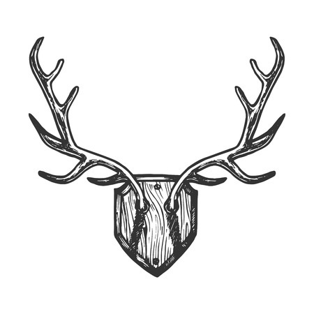 Deer horns engraving vector illustration. Scratch board style imitation. Black and white hand drawn image.