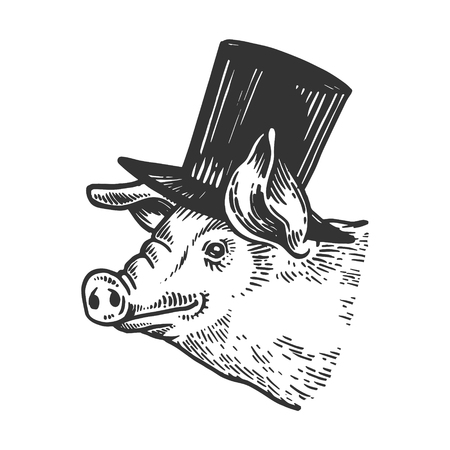 Pig animal in cylinder top hat engraving vector illustration. Scratch board style imitation. Black and white hand drawn image. 版權商用圖片