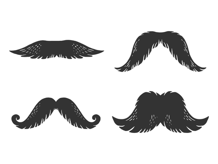 Moustache engraving vector illustration. Scratch board style imitation. Black and white hand drawn image.