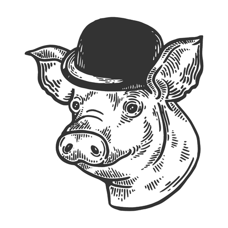 Pig animal in bowler hat engraving vector illustration. Scratch board style imitation. Black and white hand drawn image.