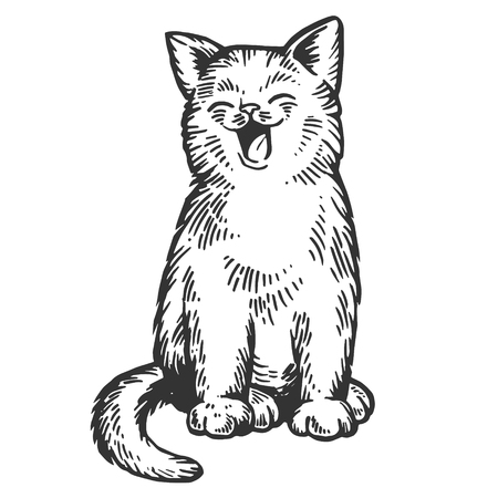 Yawning cat engraving vector illustration. Scratch board style imitation. Black and white hand drawn image. Banque d'images