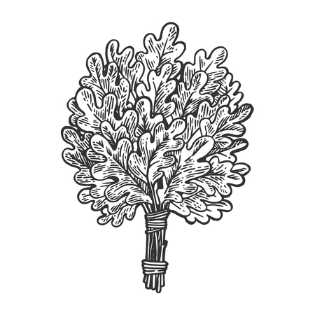 Oak broom for sauna engraving vector illustration. Scratch board style imitation. Black and white hand drawn image.