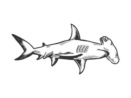 Gran tiburón martillo pez animal grabado ilustración vectorial. Imitación de tablero de rascar. Imagen dibujada a mano en blanco y negro. Foto de archivo
