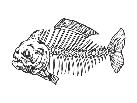 Piranha fish skeleton animal engraving vector illustration. Scratch board style imitation. Black and white hand drawn image. Ilustração