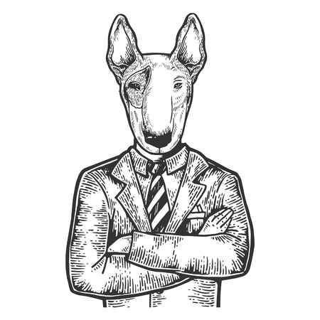 Bull terrier dog head businessman engraving vector illustration. Scratch board style imitation. Black and white hand drawn image.