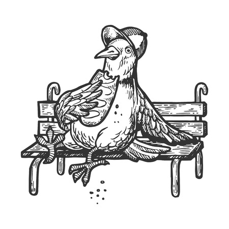 Dove pigeon sits on park bench and eats loaf of bread engraving vector illustration. Scratch board style imitation. Black and white hand drawn image.