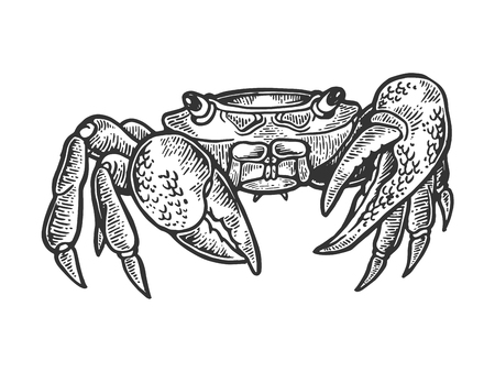 Crab sea animal engraving vector illustration. Scratch board style imitation. Black and white hand drawn image. Ilustração