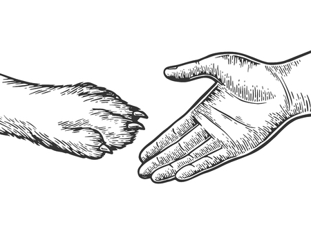 Human hand and dog paw handshake engraving vector illustration. Scratch board style imitation. Black and white hand drawn image. 矢量图像
