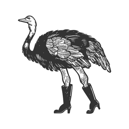 Ostrich in fashion high boots bird animal engraving vector illustration. Scratch board style imitation. Black and white hand drawn image.