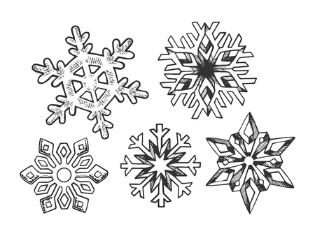 Snowflake set sketch sketch engraving vector illustration. Scratch board style imitation. Black and white hand drawn image.