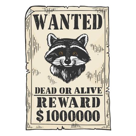 Mapache recompensa criminal cartel color boceto grabado ilustración vectorial. Imitación de tablero de rascar. Imagen dibujada a mano en blanco y negro.