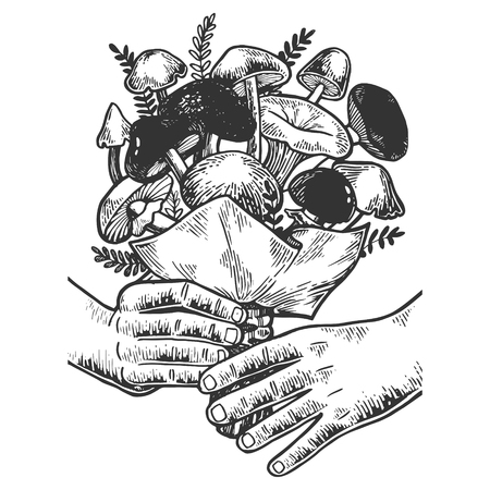 Hands with bouquet of mushrooms sketch engraving vector illustration. Scratch board style imitation. Black and white hand drawn image.