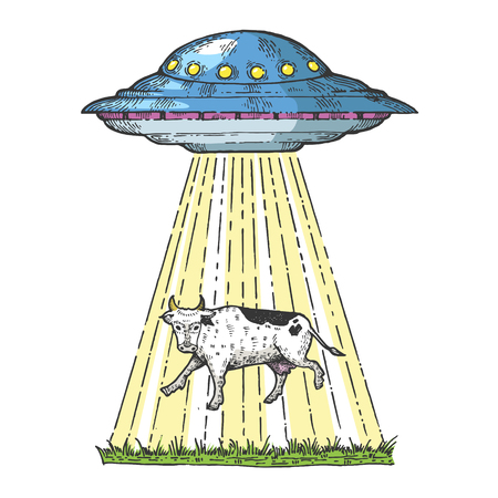 UFO kidnaps the cow color sketch engraving vector illustration. Scratch board style imitation. Hand drawn image. Çizim