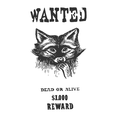 Raccoon criminal reward poster sketch engraving vector illustration. Scratch board style imitation. Black and white hand drawn image.