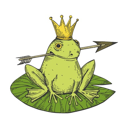 Princess Frog fairy-tale animal color sketch engraving vector illustration. Scratch board style imitation. Black and white hand drawn image. Ilustracja